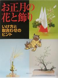 publication-12